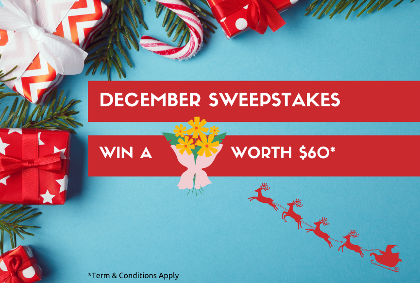 December Sweepstakes!!!
