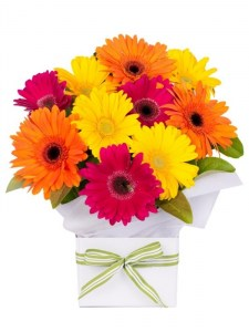 Bright Gerbera Box Arrangement
