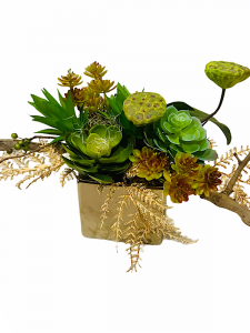 Everlasting Succulent Arrangement