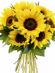 Sunflower Handtied Bunch