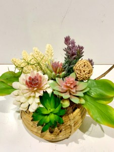 Garden of Everlasting Succulents Basket